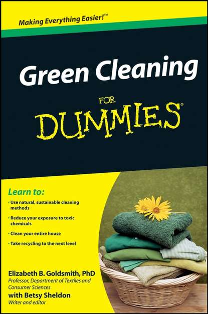 Фото - Betsy Sheldon Green Cleaning For Dummies jennifer thompson green smoothies for dummies
