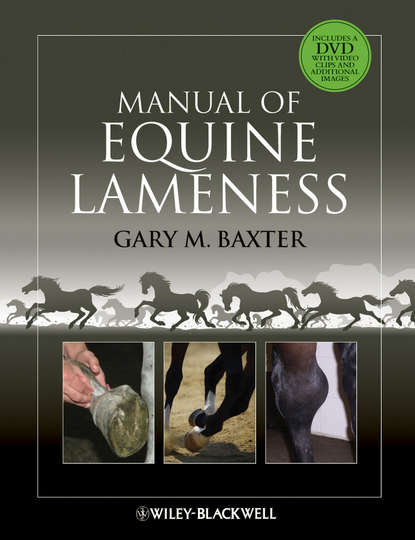 Gary Baxter M. Manual of Equine Lameness john dascanio equine reproductive procedures