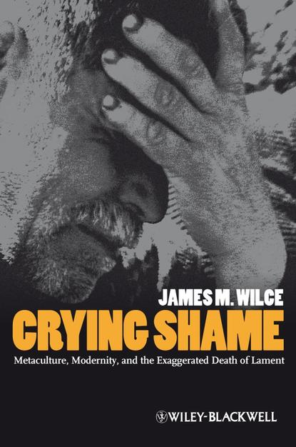 Фото - James Wilce M. Crying Shame. Metaculture, Modernity, and the Exaggerated Death of Lament paul lockhart a mathematician s lament