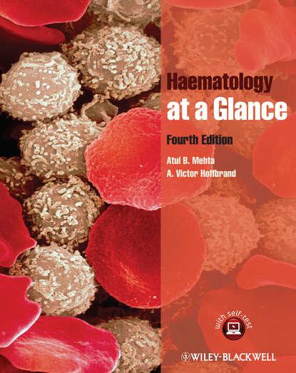 Hoffbrand A. Victor Haematology at a Glance barker roger a neuroanatomy and neuroscience at a glance