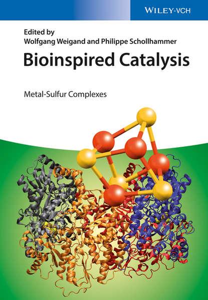 Bioinspired Catalysis. Metal-Sulfur Complexes