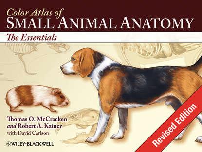 Thomas O. McCracken Color Atlas of Small Animal Anatomy недорого
