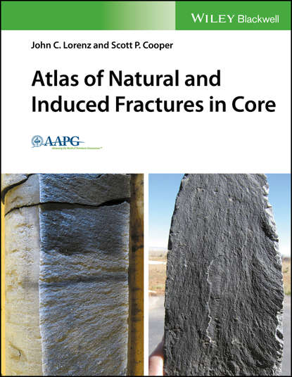 Scott Cooper P. Atlas of Natural and Induced Fractures in Core interferon alpha and ribavirin induced thyroid dysfunction