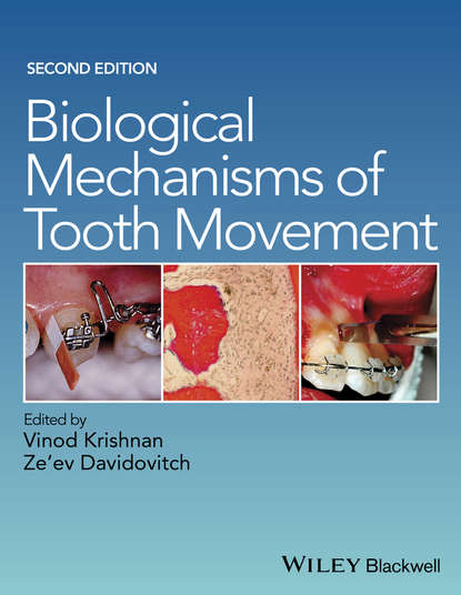 Vinod Krishnan Biological Mechanisms of Tooth Movement complex dielectric studies of biological tissues