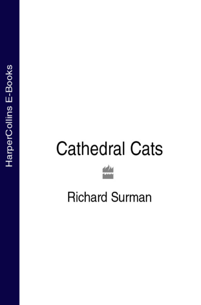 Richard Surman Cathedral Cats blasco ibáñez vicente the shadow of the cathedral