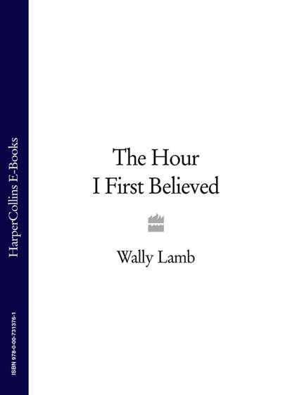 Wally Lamb The Hour I First Believed недорого