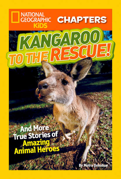 Moira Donohue Rose National Geographic Kids Chapters: Kangaroo to the Rescue!: And More True Stories of Amazing Animal Heroes недорого