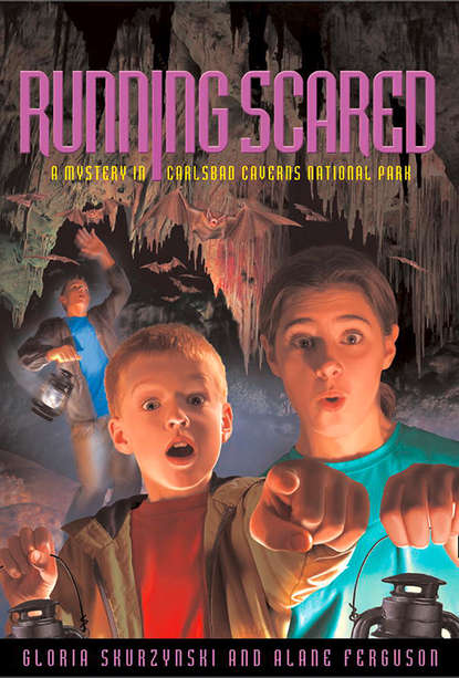 Gloria Skurzynski Mysteries in Our National Parks: Running Scared: A Mystery in Carlsbad Caverns National Park недорого