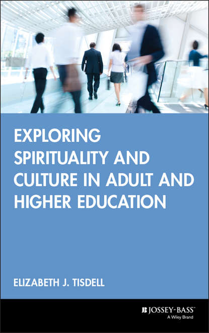 Группа авторов Exploring Spirituality and Culture in Adult and Higher Education группа авторов literature and intercultural learning in language and teacher education