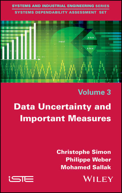 Philippe Weber Data Uncertainty and Important Measures недорого