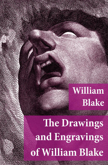 Уильям Блейк The Drawings and Engravings of William Blake (Fully Illustrated) william blake america a prophecy illustrated edition
