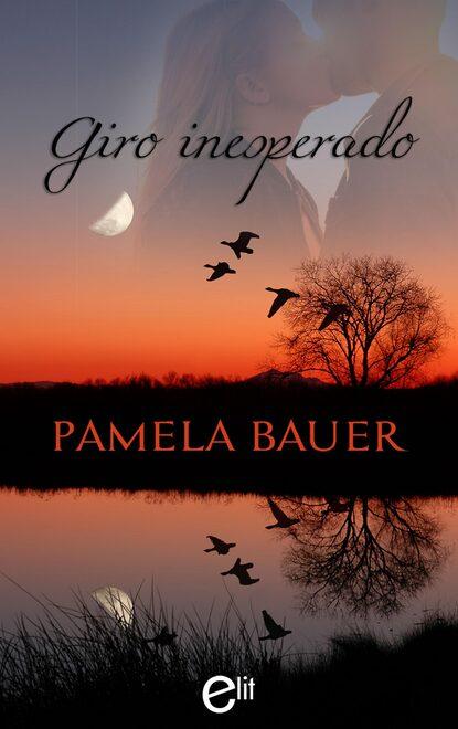 Pamela Bauer Giro inesperado pamela bauer corporate cowboy