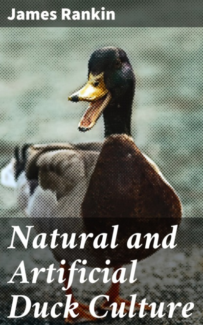 James Rankin Natural and Artificial Duck Culture reza razeghifard natural and artificial photosynthesis