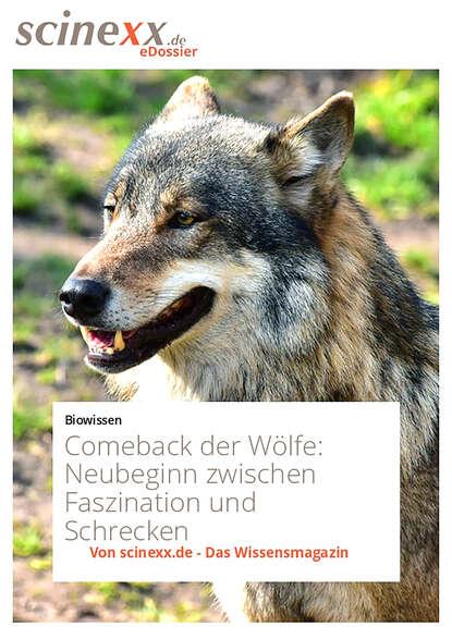 Daniel Goliasch Comeback der Wölfe недорого