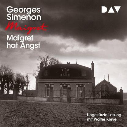 Georges Simenon Maigret hat Angst maigret 19