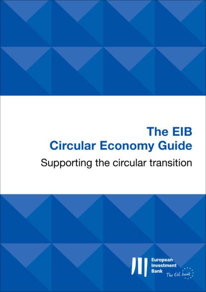 Группа авторов The EIB Circular Economy Guide the shadow economy