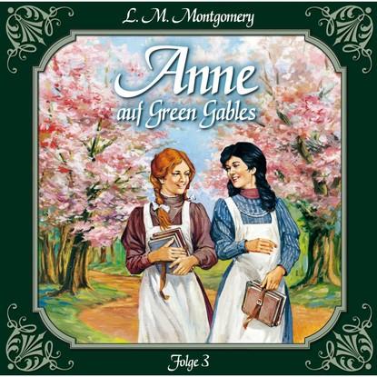 Anne auf Green Gables, Folge 3: Jede Menge Missgeschicke