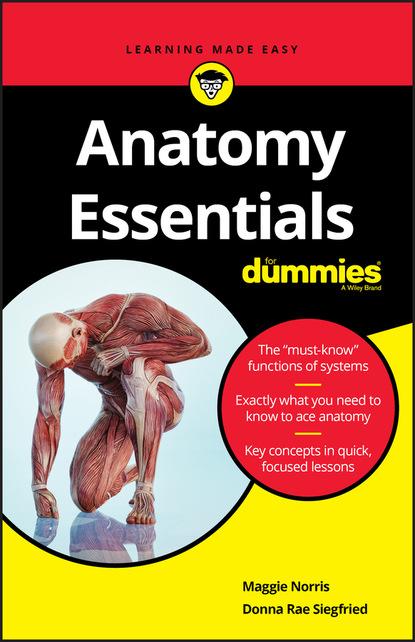 Donna Rae Siegfried Anatomy Essentials For Dummies donna serdula linkedin profile optimization for dummies
