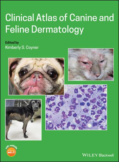 Группа авторов Clinical Atlas of Canine and Feline Dermatology lynelle r johnson clinical canine and feline respiratory medicine