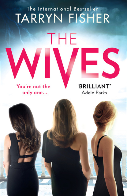 Tarryn Fisher The Wives michael wood a room full of killers a gripping crime thriller with twists you won't see coming