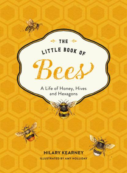 Hilary Kearney The Little Book of Bees hilary kearney the little book of bees