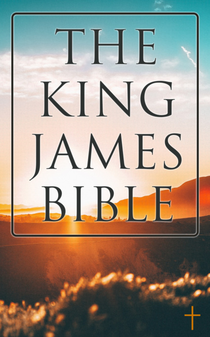 Фото - Various Authors The King James Bible james weldon johnson the autobiography of an ex colored man