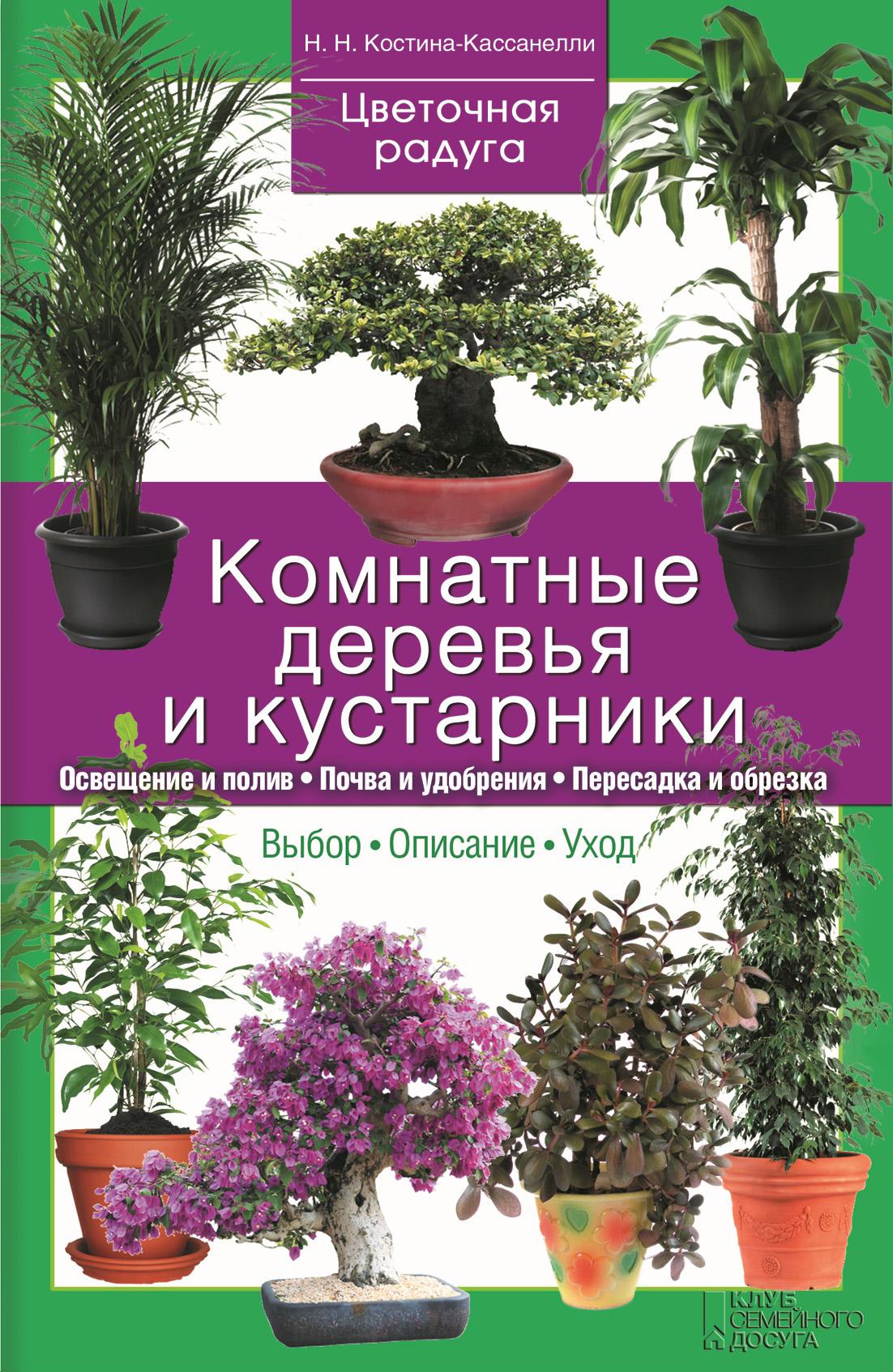 Комнатные деревья и кустарники