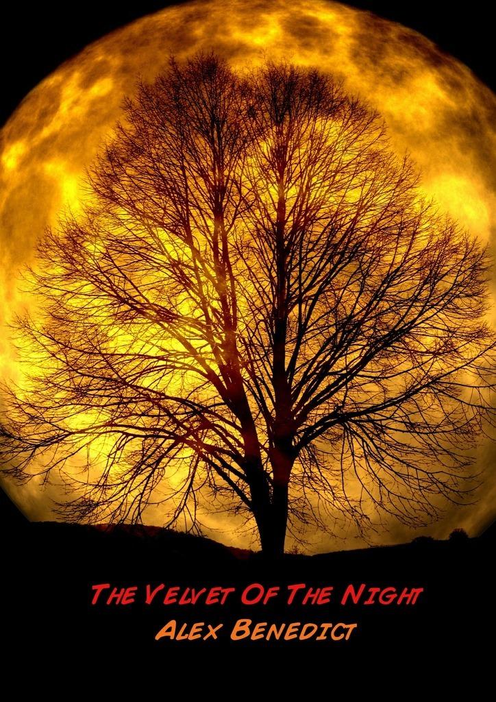 The Velvet Of The Night