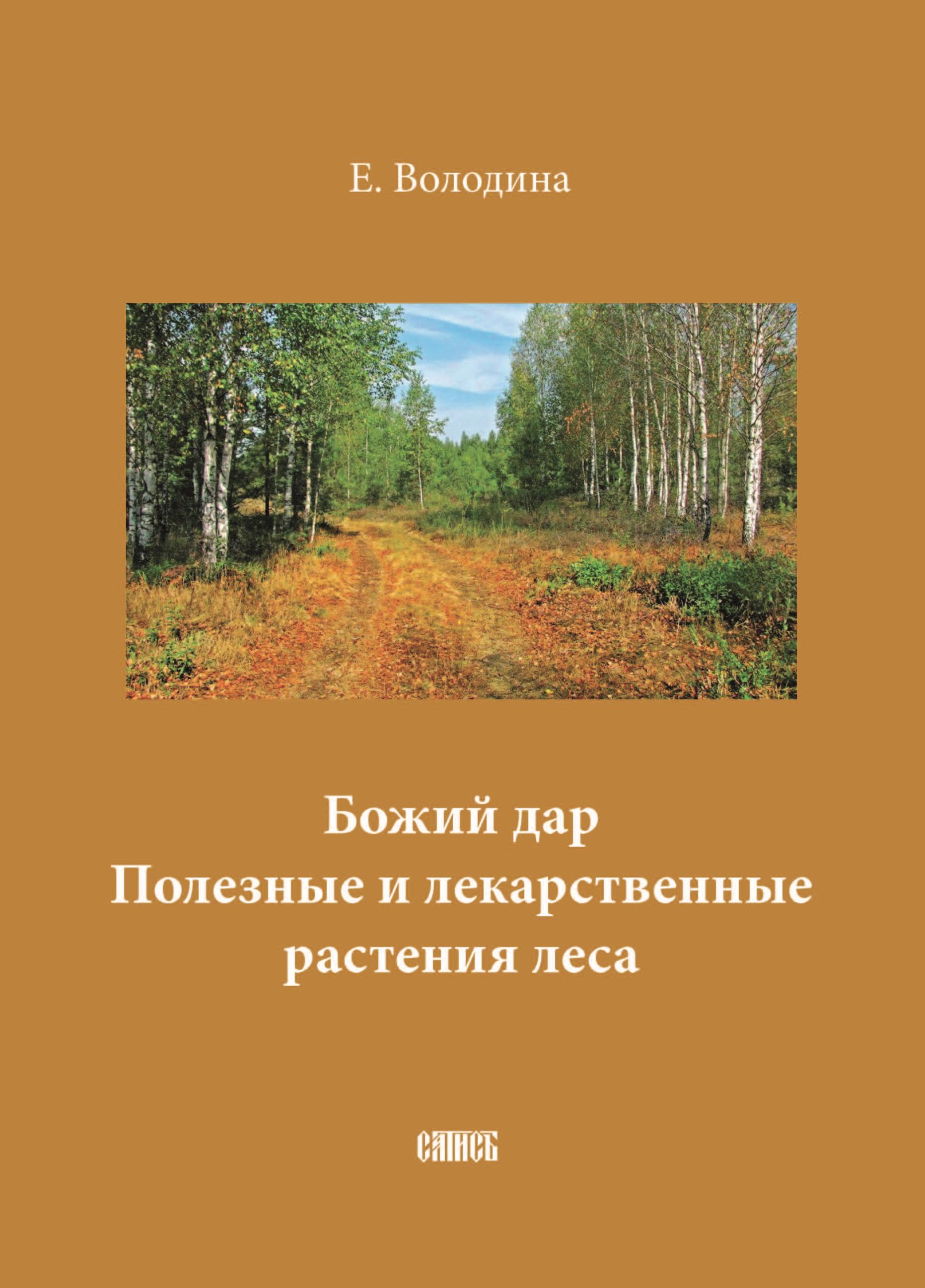 Божий дар. Полезные и лекарственные растения леса