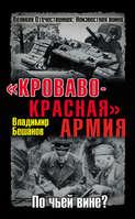 «Кроваво-Красная» Армия. По чьей вине?