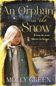 An Orphan in the Snow: The heart-warming saga you need to read this year