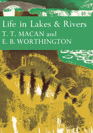 Life in Lakes and Rivers
