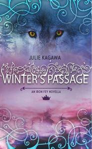 Winter\'s Passage