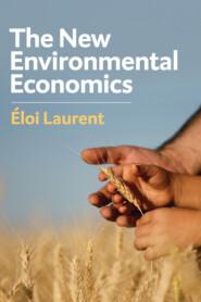 The New Environmental Economics