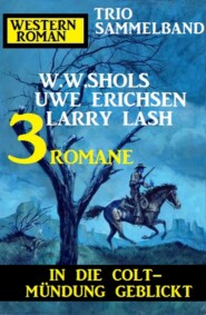 In die Colt-Mündung geblickt: Western Roman Trio Sammelband 3 Romane
