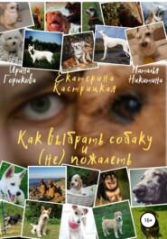 Как выбрать собаку и (не) пожалеть