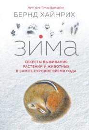 Зима: Секреты выживания растений и животных в самое суровое время года