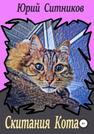 Скитания Кота