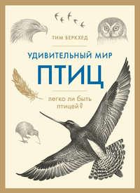 Удивительный мир птиц. Легко ли быть птицей?