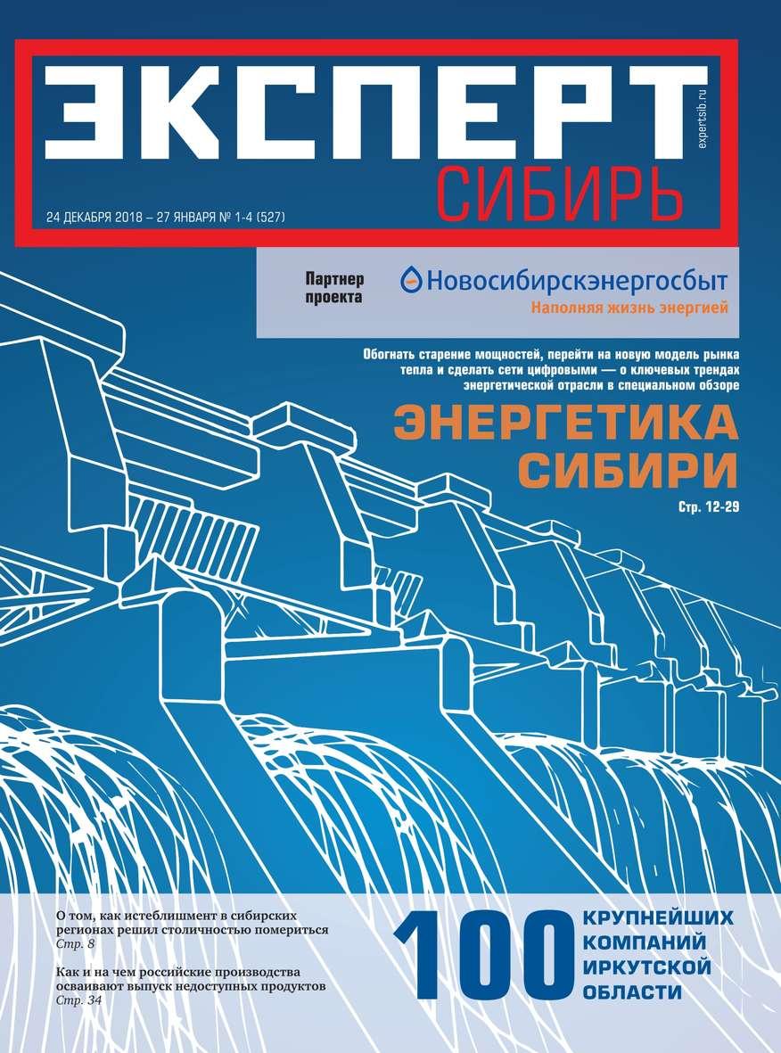 Эксперт Сибирь 01-04-2019