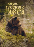 Жизнь русского леса. Большая подарочная энциклопедия