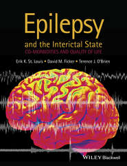 Epilepsy and the Interictal State