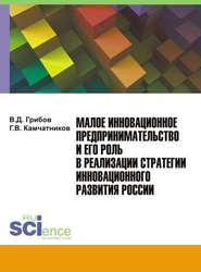Малое инновационное предпринимательство и его роль в реализации стратегии инновационного развития России