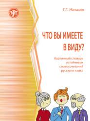 Что вы имеете в виду? Картинный словарь устойчивых словосочетаний русского языка