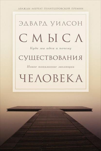 Скачать книгу Смысл существования человека