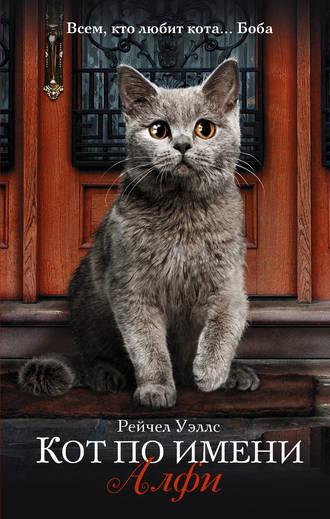 Читать онлайн бесплатно уличный кот по имени боб